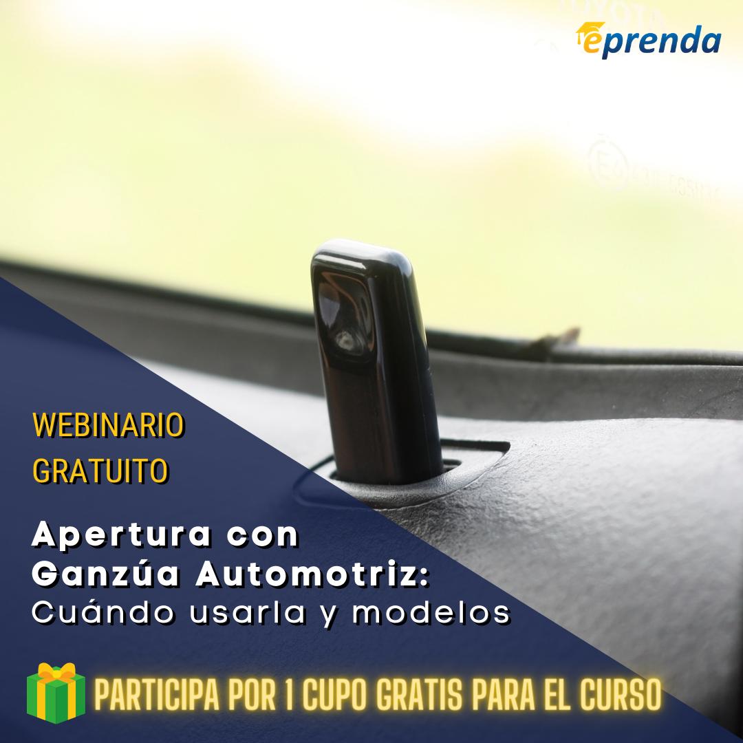 Apertura con Ganzúa Automotriz - Cuándo usarla y diferentes modelos