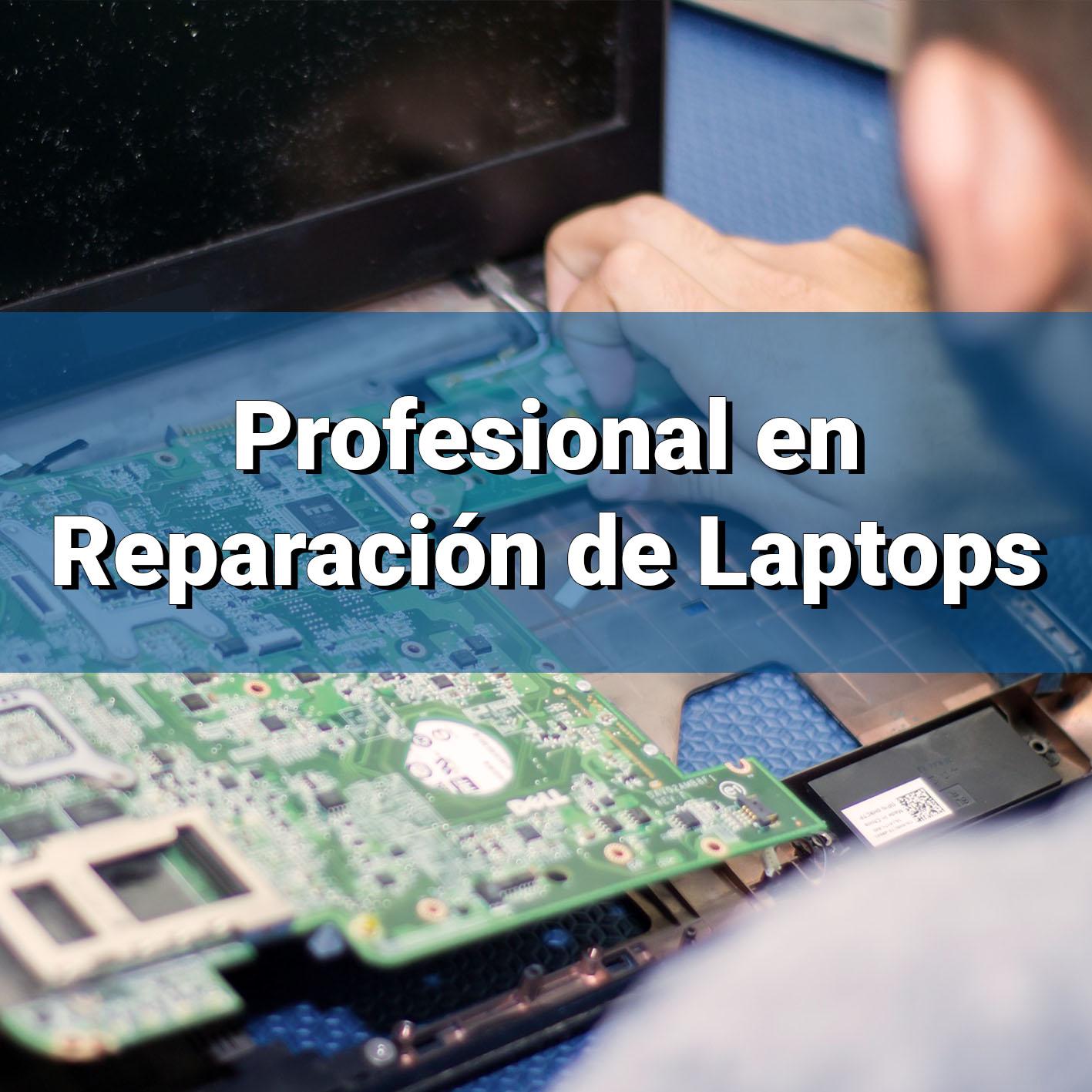Profesional en Reparación de Laptops